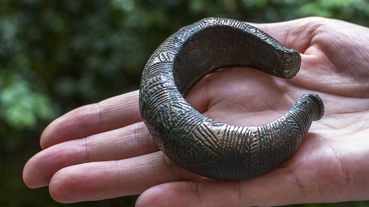 Detectorist facing charges after revealing Bronze Age find