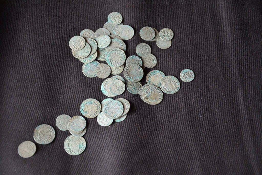 Over hundred silver coins discovered in Skoki (Western Poland)