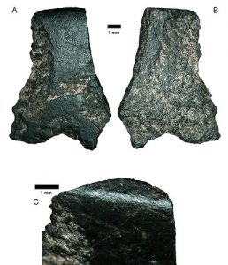 Stone flakes of an axe found during excavations (by Popular Archaeology)