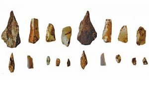 Stone tools from the barrow (by Culture24)