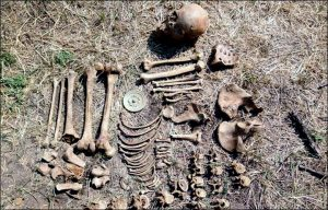 Skeleton and artefacts (by The Siberian Times)