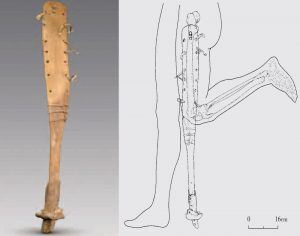 Prosthetic leg found in the ancient tomb (by Live Science)