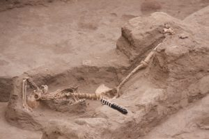 One of the female burials (by Archaeology)