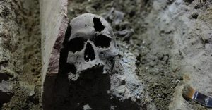 Skull found underground (by Hurriyet Daily News)