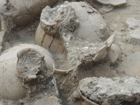 Winery unearthed in a Canaanite palace