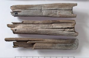 Wooden poles - remains of the prehistoric sledge (by Glacier Hub)