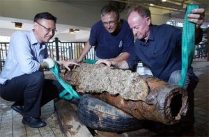 The canon weighting one ton (by South China Morning Post)
