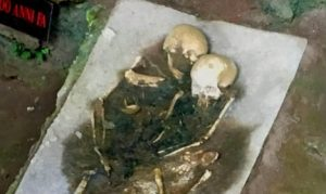 Skeletons from Calabria's Grotta del Romito (by The Local)