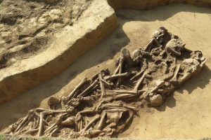 Mass grave found in Sandomierz (by M. Bajka)