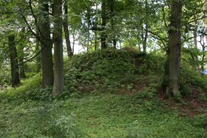 Photo of the motte (by Muzeum w Gliwicach)