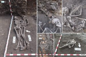 Skeletons discovered at the site (by Lublin112.pl)