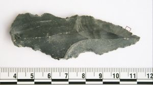 Blade with traces of rhino residue (by PhysOrg)