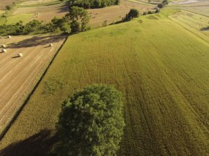 Aerial photos by drones reveal ancient sites (by Live Science)