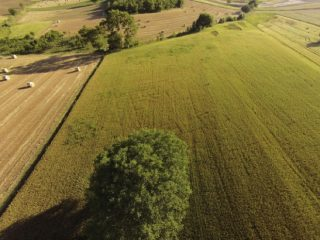 Drones reveal hidden archaeological features in remote region