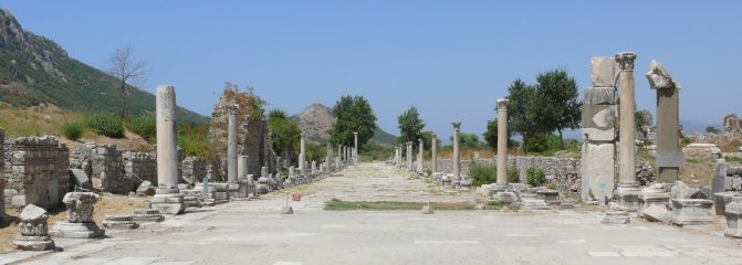 Excavations in Ephesus suffer from Turkey's political conflict with Austria