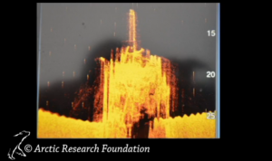 Side scan of HMS Terror (by Arctic Research Foundation)