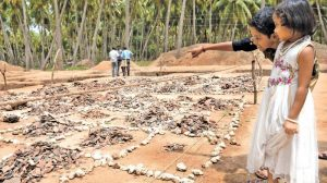 The Keezhadi site (by Deccan Chronicle)