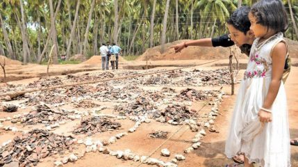 Iron Age Tamil site reveals numerous finds in South India