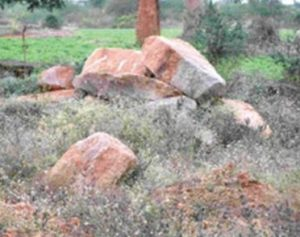 Megalithic site (by Bangalore Mirror)