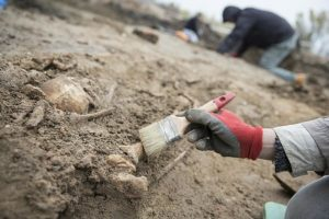 Excavations at the site (by TVN Warszawa)