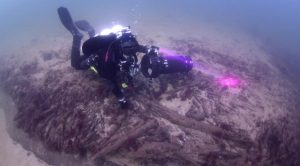 Wood found underwater (by Lund University)