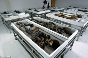Chinchorro mummy storage in Arica (by Daily Mail)