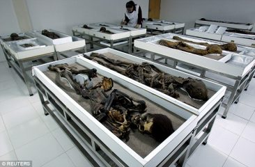 Worlds oldest mummies in Chile in need for protection due to climate change