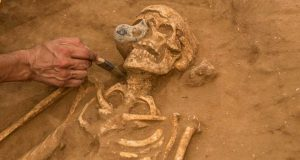 Exploration of a Philistine burial (by Tsafir Abayov, Leon Levy Expedition via Science News)