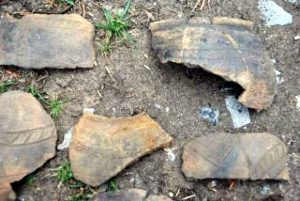 Pottery sherds (by Ida Westh Hansen via Science Nordic)