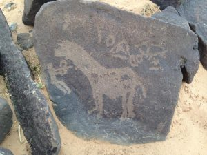 Rock art (by Peter Akkermans via Science Live)