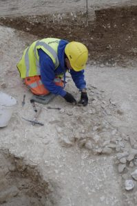Excavations at the newly discovered site near Stonehenge(by Wessex Archaeology)