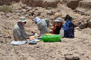 Excavations at Wadi Faynan (by Barqa Landscape Project)