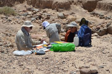 Chalcolithic river environment pollution discovered in Jordan