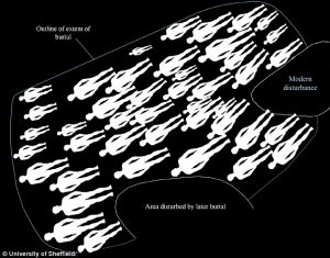 Layout of the burial ground (by University of Sheffield)