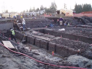 Wetland gardens from 3800 years ago discovered in British Columbia