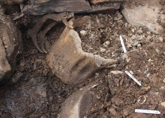 Iron Age burial within a whalebone discovered