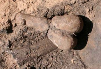 Earliest known clay figurines in American Southwest being fertility symbols