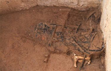Ancient site in China yields signs of ritual animal sacrifice