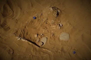 6000-years-old graveyard of herdsmen 	and their animals found
