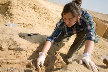 Skeletons from Egyptian necropolis in Saqqara studied