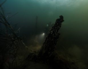 Military ship from 17th century found in Swedish waters