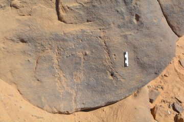 Neolithic rock art discovered in Egypt
