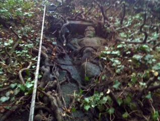 Thick ivy reveals unknown sculptures at famous castle