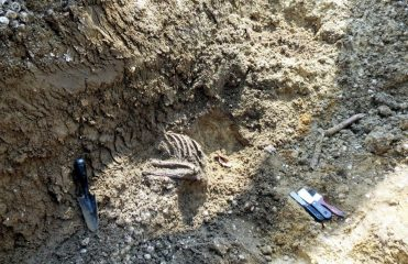 5000-year-old skeleton found by construction workers
