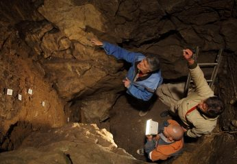 Neanderthal and Denisovan DNA samples extracted from sediments