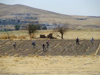 Traces of 200 settlement sites found in Northern Mesopotamia