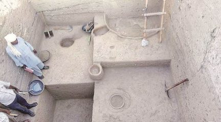 Remains of a cooked meal found at a Harappan site