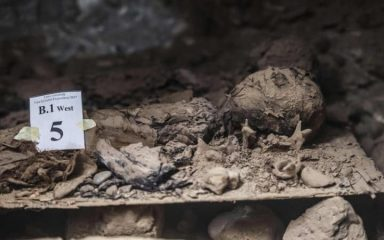 Catacomb filled with numerous mummies found at ancient necropolis