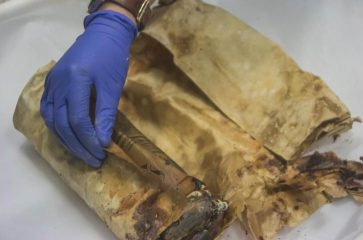 A 100-year-old time capsule opened