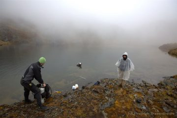 Archaeologists dive in Andes in search for artefacts